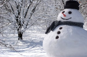stock-photo-6284593-perfect-snowman-at-home