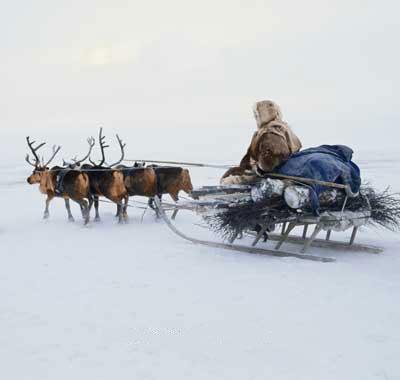 Weihnachten und die ewige Suche