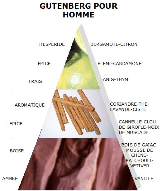 Noten im Parfum? Das bedeuten Kopf, Herz und Basis