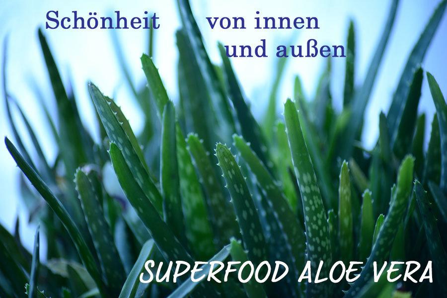 Pflege mit Aloe Vera – das Original Superfood